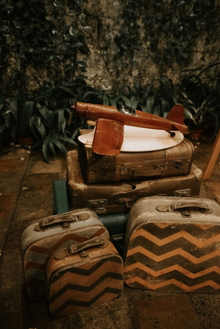 Maletas y avión vintage